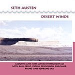 Seth Austen Desert Winds