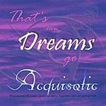 Acquisotic That's How Dreams Go