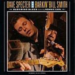 Dave Specter Bluebird Blues