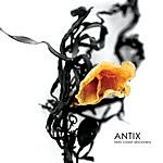 Antix Twin Coast Discovery