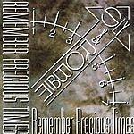 Sly & Robbie Remember Precious Times