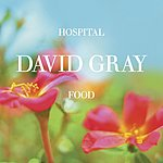 David Gray Hospital Food (Radio Edit)/Smile Like You Mean It (Live)