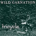 Wild Carnation Tricycle