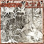 Misery Misery / Path of Destruction Split CD