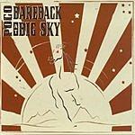 Poco Bareback At Big Sky