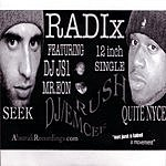 Radix Radix Vinyl