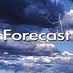 Forecast Did You Hear That?