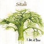 Sitali I Am A Tree