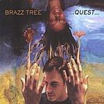 Brazz Tree ...Quest...