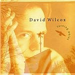 David Wilcox Turning Point