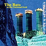 The Bats At The National Grid