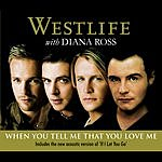 Westlife When You Tell Me That You Love Me (2 Track Single)