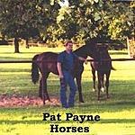 Pat Payne Horses