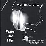 Todd Hildreth Trio From The Hip