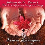 Shawn Livingston Balancing The Qi Vol.1 Music for Acupuncture, Healing And Massage