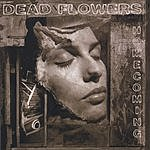 Dead Flowers Homecoming