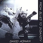 David Asman From Blues To Insanity
