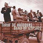 Taraf De Haïdouks Band Of Gypsies