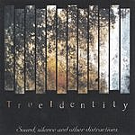True Identity Sound, Silence And Other Distractions