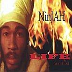 Ninjah Life As It Is