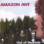 Amazon Ant Out Of The Hole