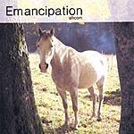 Allicorn Emancipation