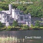 David Michael Walsh Castle Of Dreams