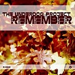 The Underdog Project Remember (Single)