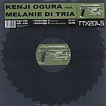 Kenji Ogura Kreissäge 2