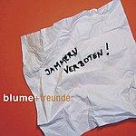 Blume & Freunde Jammern Verboten (Single)