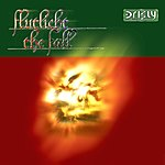 Flutlicht The Fall (Maxi-Single)