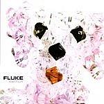 Fluke Switch (4 Track Maxi-Single)