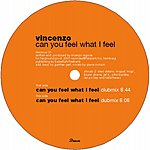 Vincenzo Can You Feel What I Feel?