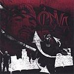 Cleva 97% Of Da Album