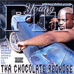 Young Pit Chocolate Rednose (Parental Advisory)