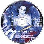 Gilli Moon The Angel Remixes
