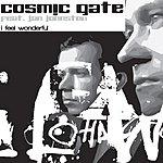 Cosmic Gate I Feel Wonderful
