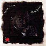 James Cotton 3 Harp Boogie