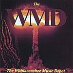 W.M.D. The Maze
