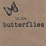 Leni Stern 10,000 Butterflies