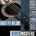 Robert Pete Williams Blues Masters