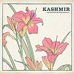 Kashmir Rocket Brothers