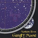 Gangly Moose Northern Town
