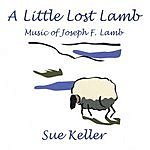 Sue Keller A Little Lost Lamb
