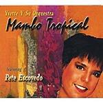 Mambo Tropical Yvette Y Su Orquestra Mambo Tropical Featuring Pete Escovedo