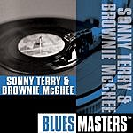 Sonny Terry Blues Masters