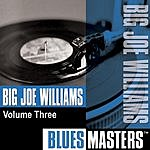 Big Joe Williams Blues Masters, Vol.3