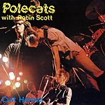 The Polecats Cult Heroes