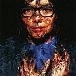 Björk Selmasongs