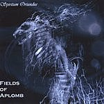 Fields Of Aplomb Spiritum Oriundus